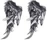 2 wings