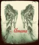 almana cover 2